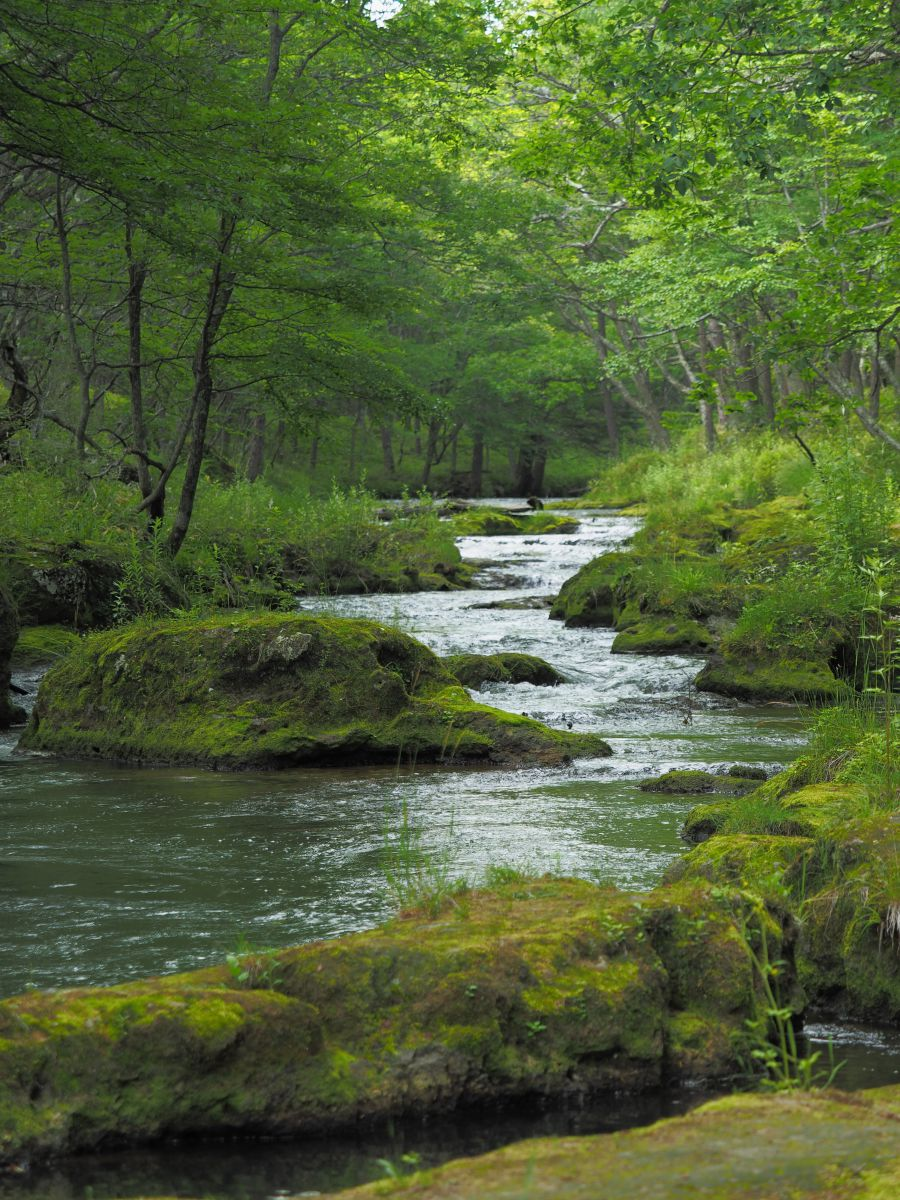の の に 流れ 川 よう