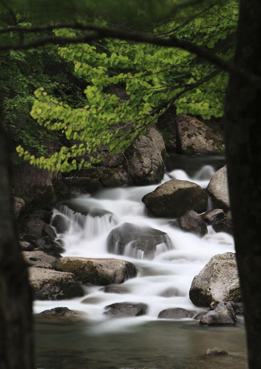 流れる 川 音 の 擬音語・擬態語―水、流れる