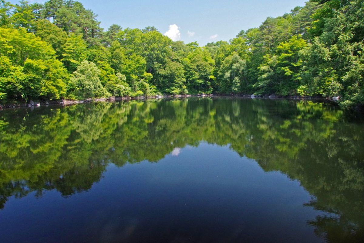 裏磐梯の湖沼(1) | 自然・風景 > 湖沼 | GANREF