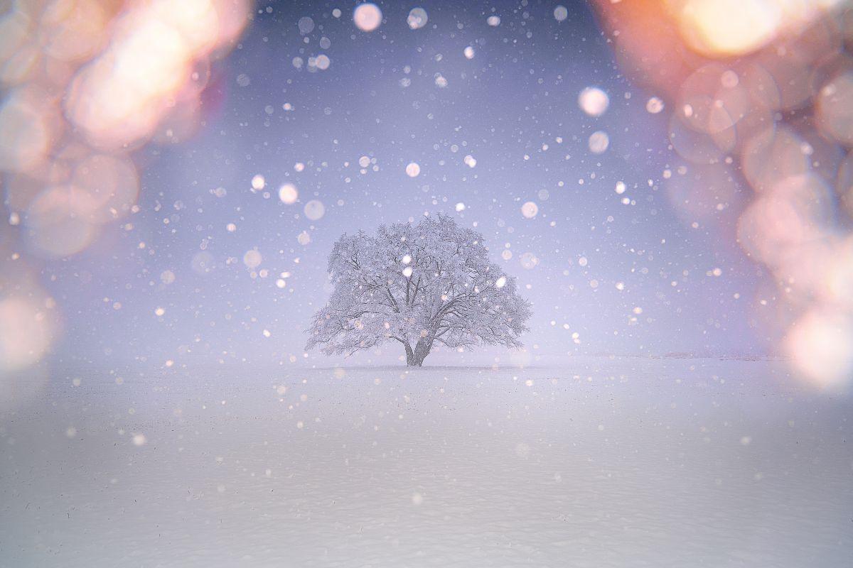 雪 は なごり と