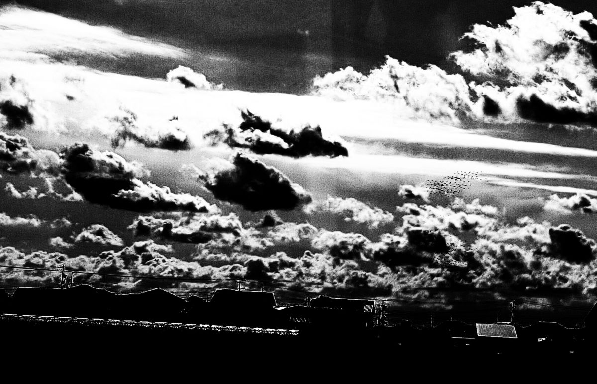 雲の光景 | 自然・風景 > 空・雲 | GANREF