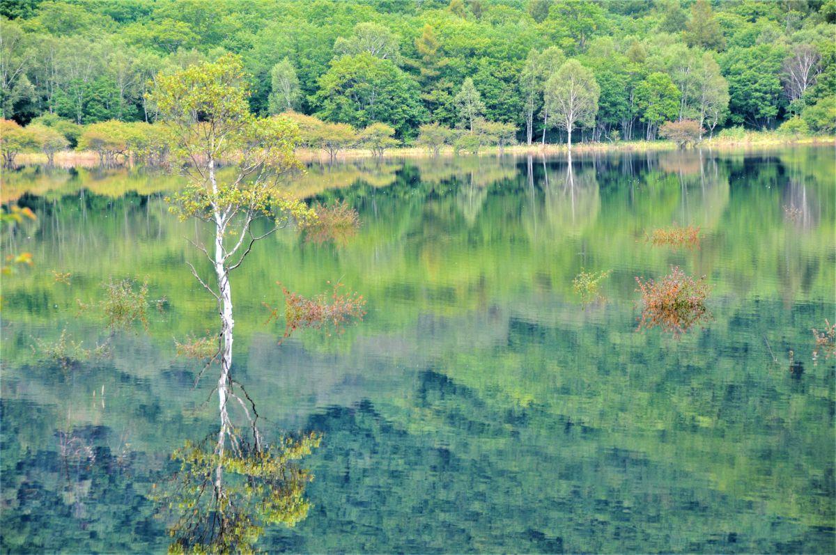 幻の湖沼出現 | 自然・風景 > 高原 | GANREF